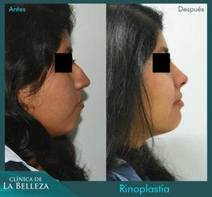 Clínica de la Belleza 12 v1